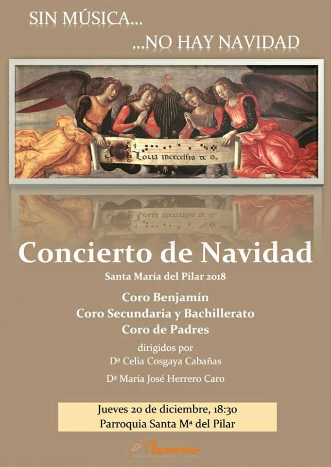 Cartel concierto Sin Música no hay Navidad